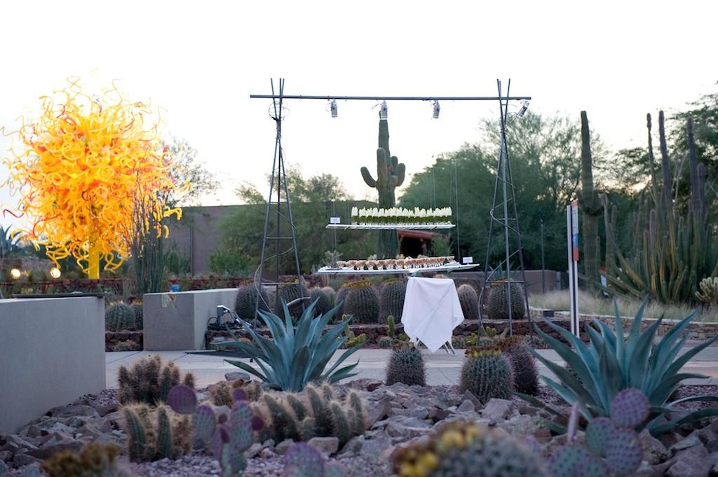 Fantastic Venues Desert Botanical Garden